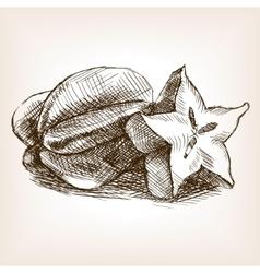 Carambola fruit hand drawn sketch style vector image vector image