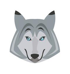 portrait of wolf husky animal wildlife image vector image