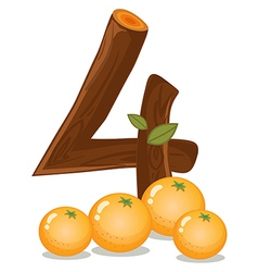 Four oranges vector image vector image