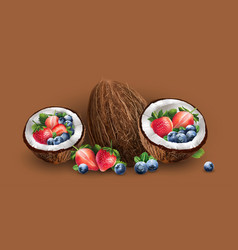 Coconut blueberries and strawberry vector