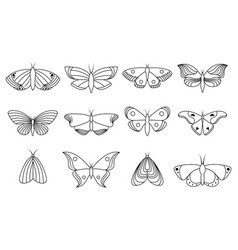 collection icons butterflies vector image