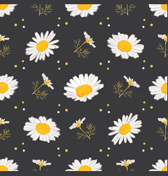 daisy seamless pattern chamomile background vector image