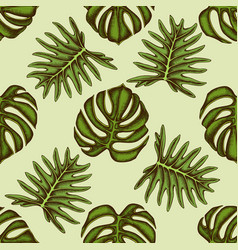 seamless pattern with hand drawn colored monstera vector image