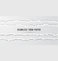 seamless torn paper stripes paper texture vector image