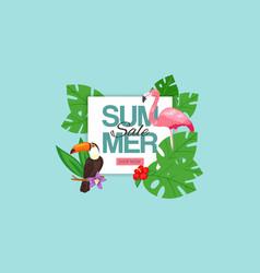 summer sale banner pink vector image