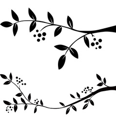 Twig with leaves and berries - black silhouette vector