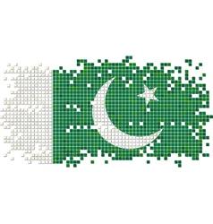 Pakistani grunge tile flag vector