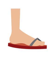 cartoon feet sandal vacation style vector image