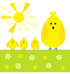 Chicken sunny background vector