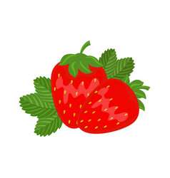 colorful red strawberry with green leaf vector image