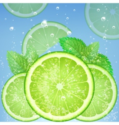 Fresh lime vector