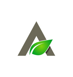 green leaf letter a organic logo vector image