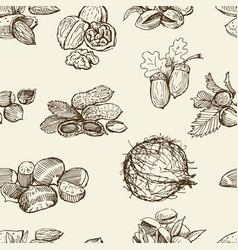 Pattern different nuts vector