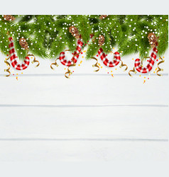 spruce twigs background vector image