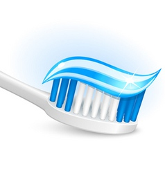 toothbrush and gel toothpaste vector image