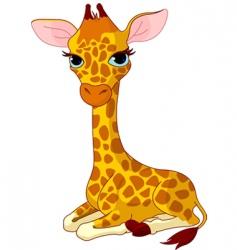 giraffe calf vector image