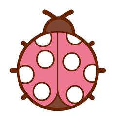 ladybug insect small icon animal vector image