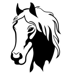 portrait a wild mustang black white vector image