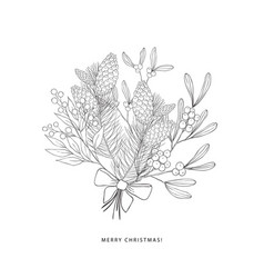 Winter bouquet with evergreen plants vector
