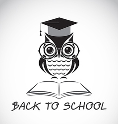 Owl school vector image