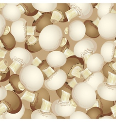 Background of white and brown champignon vector