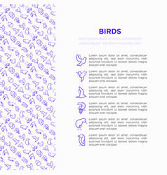 birds concept with thin line icons set vector image