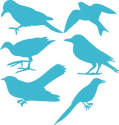 birds digital clipart 3 vector image