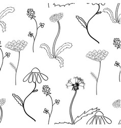 Seamles pattern with meadow flower vector