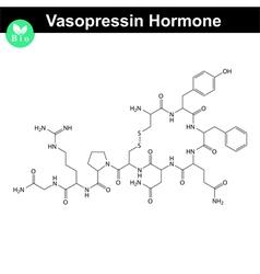 Vasopressin hormone vector