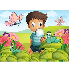 A little boy in the garden vector
