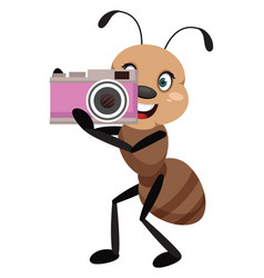 Ant with camera on white background vector