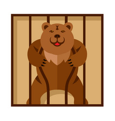 bear in zoo cage strong scary wild animal vector image