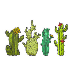cactus plant set sketch engraving vector image