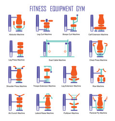 fitness equipment color vector image
