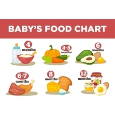 Healthy food for babies in different age vector
