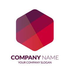 hexagon logo template stock vector image