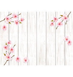 sakura japan cherry branch on wooden background vector image
