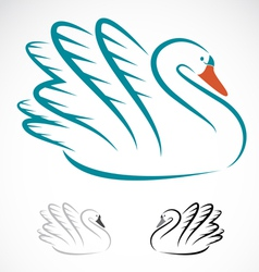 Swans vector image vector image