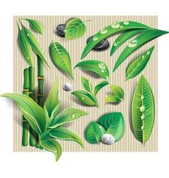 Set of leaf vector image vector image