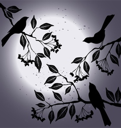 Birds on the branch during summers night vector