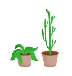 room plants with leaves set vector image
