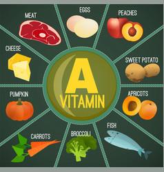 Vitamin a foods vector