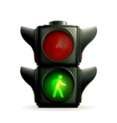 Green light vector image vector image