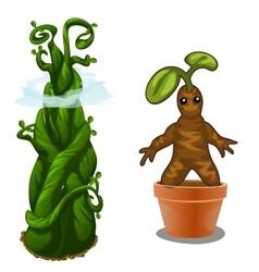 Aquatic and terrestrial plant magic vector