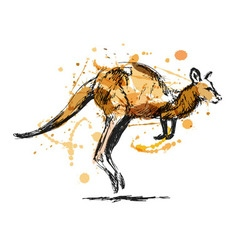 Colored hand sketch leaping kangaroo vector image