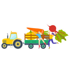 delivery harvesting vegetables farm vector image