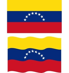 Flat and waving Venezuelan Flag vector