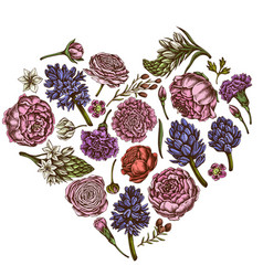 Heart floral design with colored peony carnation vector