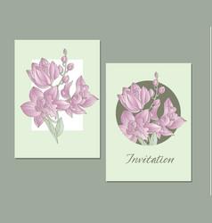line-art orchid flowers design element vector image