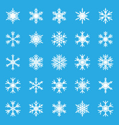 Snowflake set icon in flat style snow flake vector